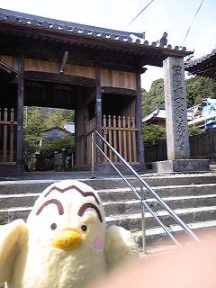 十一番藤井寺